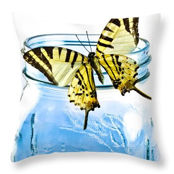 Butterfly On A Blue Jar Throw Pillow