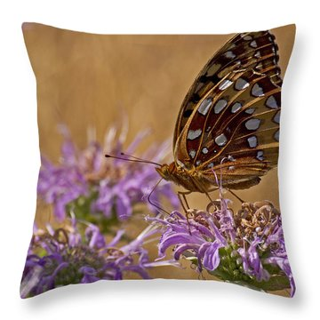 Butterfly On Bee Balm Throw Pillow by Shelly Gunderson