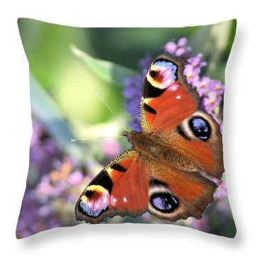 Butterfly On Buddleia Throw Pillow by Gordon Auld