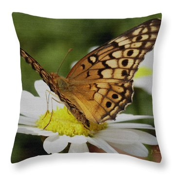 Throw Pillow featuring the photograph Butterfly On Daisy by James C Thomas