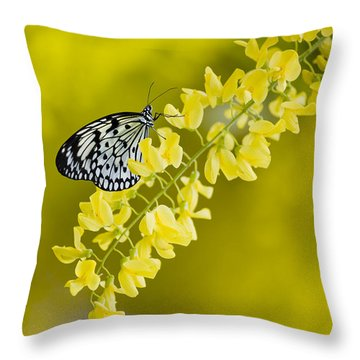 Butterfly On Laburnum Throw Pillow
