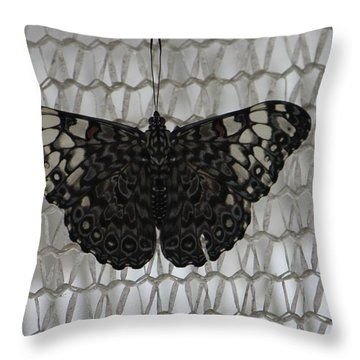 Butterfly On Net Throw Pillow by Bill Woodstock