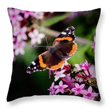 Butterfly On Penta Throw Pillow