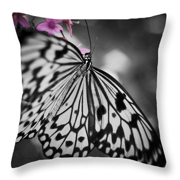 Butterfly On Pink Flowers Throw Pillow