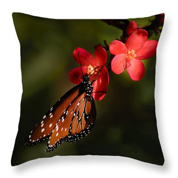 Butterfly On Red Blossom Throw Pillow