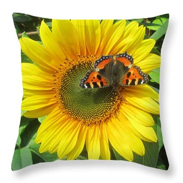 Butterfly On Sunflower Throw Pillow
