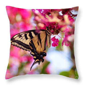 Butterfly On The Crepe Myrtle. Throw Pillow