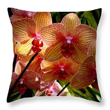 Throw Pillow featuring the photograph Butterfly Orchids by Rodney Lee Williams