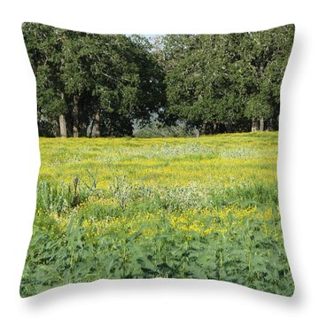 Throw Pillow featuring the photograph Butterfly Paradise by John Glass