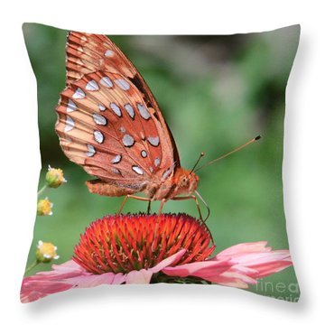 Butterfly Sipping A Coneflower Throw Pillow