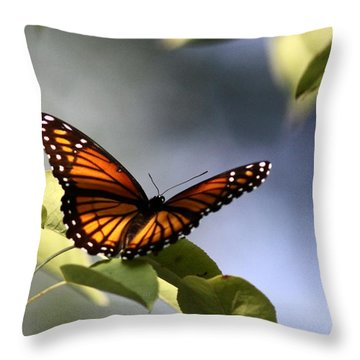 Butterfly -  Soaking Up The Sun Throw Pillow