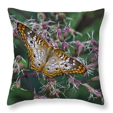 Throw Pillow featuring the photograph Butterfly Soft Landing by Thomas Woolworth