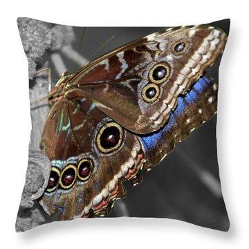 Butterfly Spot Color 1 Throw Pillow