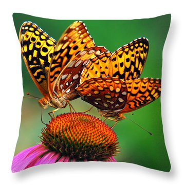 Butterfly Twins Throw Pillow by Christina Rollo