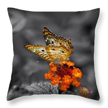 Butterfly Wings Of Sun Light Selective Coloring Black And White Digital Art Throw Pillow by Thomas Woolworth