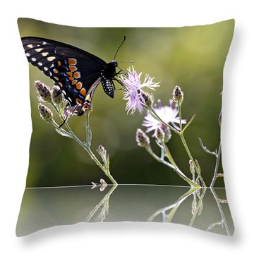 Throw Pillow featuring the photograph Butterfly With Reflection by Eleanor Abramson