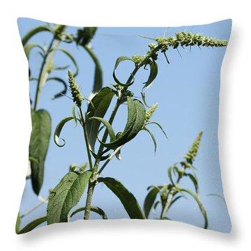 Throw Pillow featuring the photograph Butterflybush by Susanne Baumann