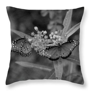 Butterflys Throw Pillow by Joseph G Holland