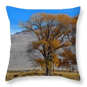 Buttermilk Country Throw Pillow