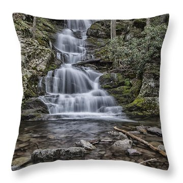 Buttermilk Throw Pillow