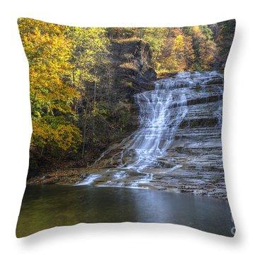 Buttermilk Falls Autumn Throw Pillow by Colin D Young