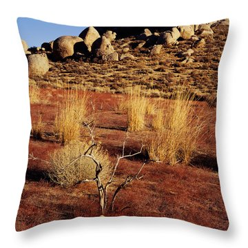 Buttermilks - Red Brush Throw Pillow
