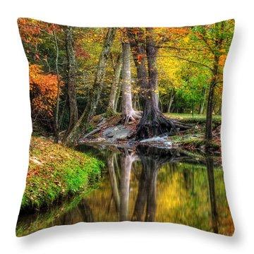Throw Pillow featuring the photograph Butternut Creek In Fall by Greg Mimbs