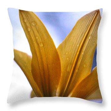 Buttersoft Droplets Throw Pillow by Deborah  Crew-Johnson