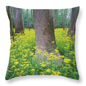 Butterweed Blooming In Congaree Throw Pillow