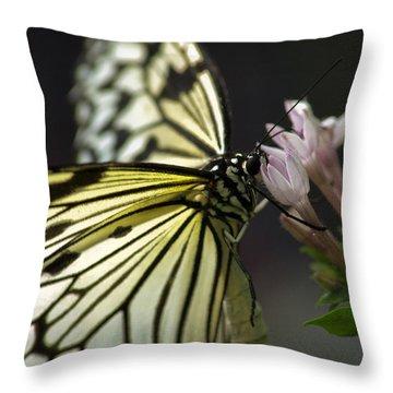 Butteryfly Throw Pillow