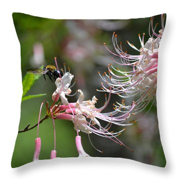 Throw Pillow featuring the photograph Buzz Buzz by Tara Potts