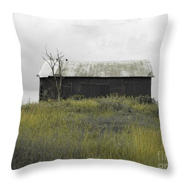 Buzzards Throw Pillow by Michael Krek