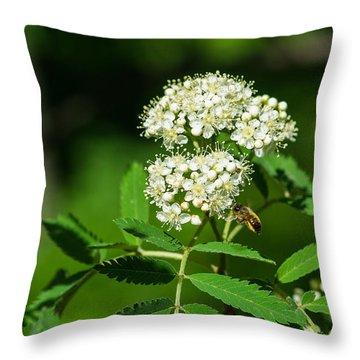 Buzzing Bee Throw Pillow by Alexander Senin