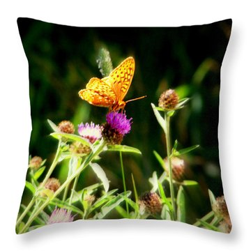 By Mornings Light Throw Pillow