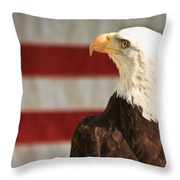 By The Dawns Early Light... Throw Pillow