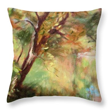 By The Greenway In Autumn- Along The Roanoke River Throw Pillow by Bonnie Mason