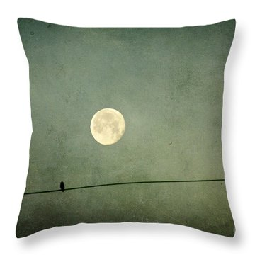 By The Light Of The Moon Throw Pillow by Joan McCool