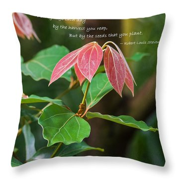 Throw Pillow featuring the photograph By The Seeds That You Plant by Jordan Blackstone