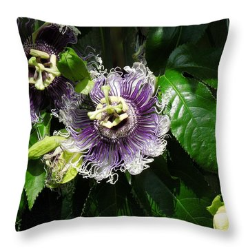 Throw Pillow featuring the photograph Byron Beauty by Ron Davidson