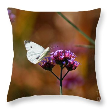 Cabbage White Butterfly In Fall Throw Pillow by Karen Adams