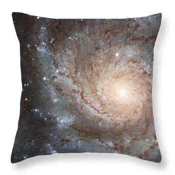 Cabbage With Galaxy And Pink Flowers Throw Pillow