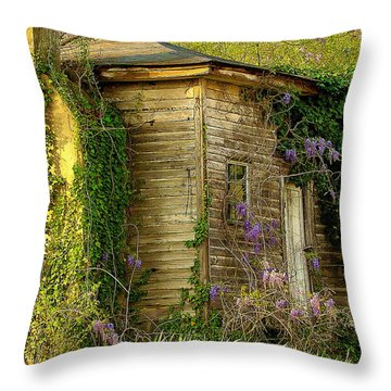 Cabin In The Back Throw Pillow by Rodney Lee Williams