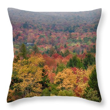 Cabin In Vermont Fall Colors Throw Pillow