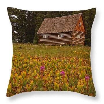 Cabin On Grand Mesa Throw Pillow
