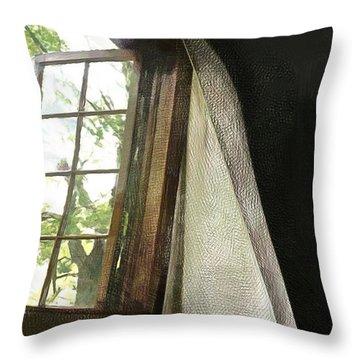 Cabin Window Throw Pillow