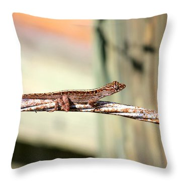 Cable Wire Bridge Throw Pillow by Cyril Maza