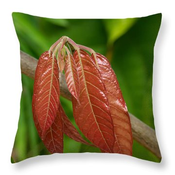 Cacao Leaf New Growth Throw Pillow