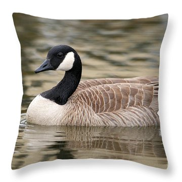 Cackling Goose Throw Pillow