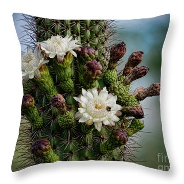 Cacti Bouquet  Throw Pillow