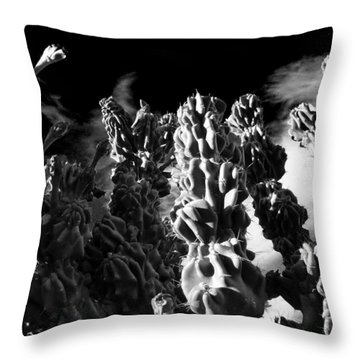 Throw Pillow featuring the photograph Cactus 1 Bw by Mariusz Kula